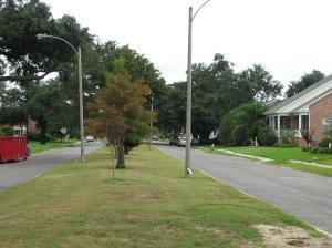 Milne Boulevard.